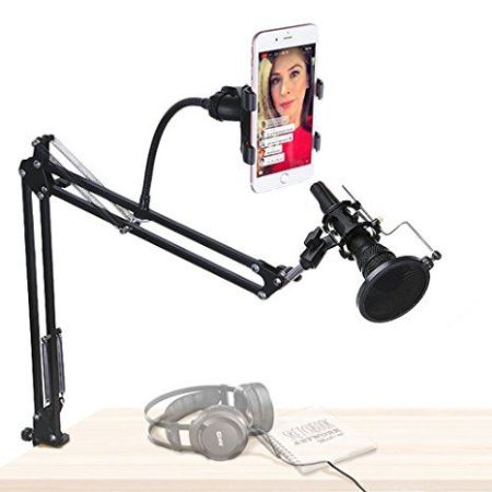 Microphone And Mobile Stand
